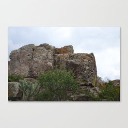 Mountain and Cactus overlay Canvas Print