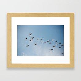 V Formation Framed Art Print