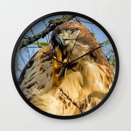 Hiya Hawk 3 View Mug Wall Clock