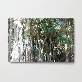 Twisty Trees Metal Print