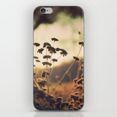Days blur into one iPhone & iPod Skin