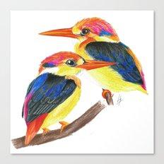 Kingfisher IV Canvas Print