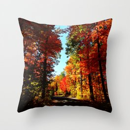 Fall Forest Road Throw Pillow