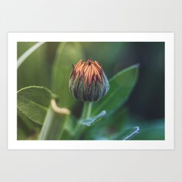 In the background Art Print
