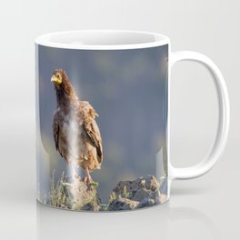 Young Egyptian Vulture Coffee Mug