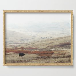 Lone Bison on National Bison Range in Montana Serving Tray