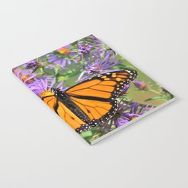 Monarch Butterfly on Wild Aster Flower Notebook
