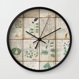 The Voynich Manuscript Quire 1 - Natural Wall Clock