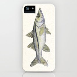 """Snook"" by Amber Marine - Centropomus undecimalis ~ Watercolor Illustration, (Copyright 2013) iPhone Case"