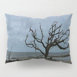 A Ghost Tree On Jekyll Island Beach Pillow Sham