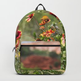 Palo Duro Canyon State Park Backpack