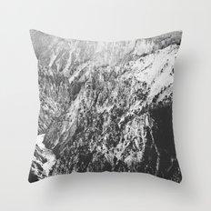 Canyon Black and White Throw Pillow