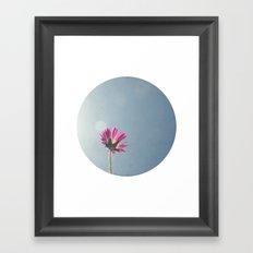 Pink flower circle print Framed Art Print