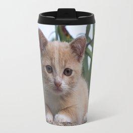 kitten on a rock Travel Mug