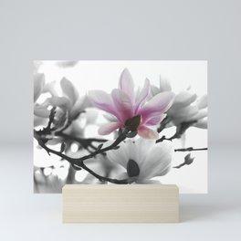 Springtime magnolia painting in nature Mini Art Print