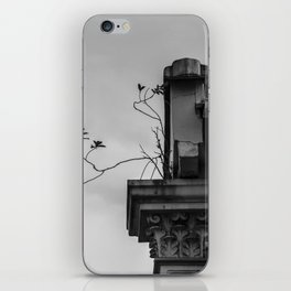 : roots : iPhone Skin