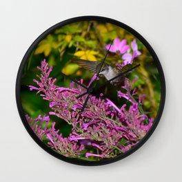 Hovering hummingbird feeding from agastache 58 Wall Clock
