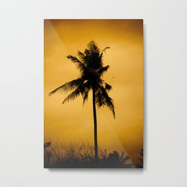 Coconut palm on sunset. Metal Print