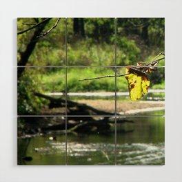 Peaceful Waters Wood Wall Art