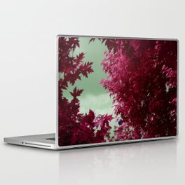 The Balloon Laptop & iPad Skin