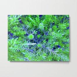 Bizarre Grasses Metal Print
