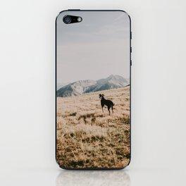 WILD TULA /// Soak it in iPhone Skin