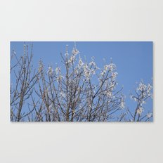 Half melted  Canvas Print