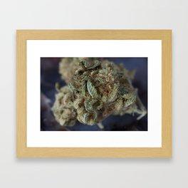 Close up of Deep Sleep Medicinal Medical Marijuana Framed Art Print