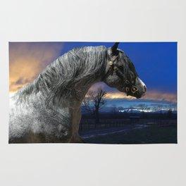 Welsh Pony Stallion Rug