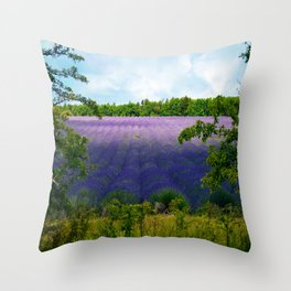 Summertime Lavender Throw Pillow