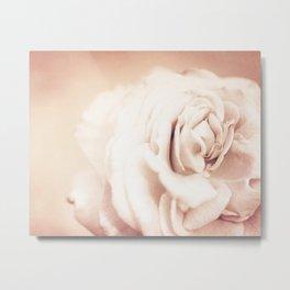White Vintage Rose Fine Art Photography Metal Print