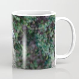 Portrait of a bird of prey with dark head and light beak Coffee Mug