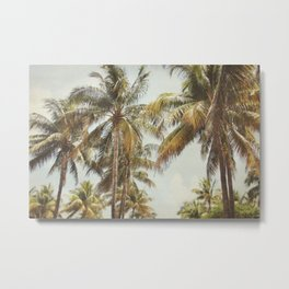 Palm Trees, Miami Beach, Dreamy Wall Art, Palm Leaves, Vintage Palm Tree Print Metal Print