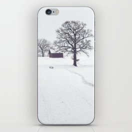 Rural Winter Landscape iPhone Skin