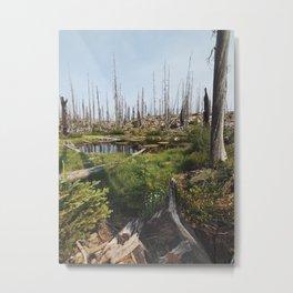 Oregon Pond Metal Print
