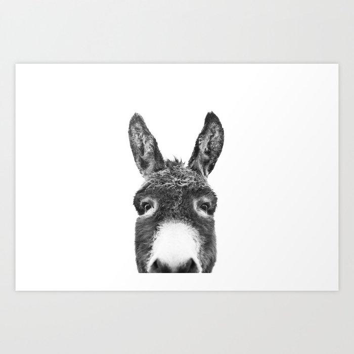 Hey Donkey BW Kunstdrucke