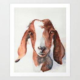 Boer Goat Watercolor Art Print