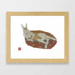 Kangaroo, Animals, Wildlife Framed Art Print