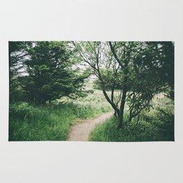 Happy Trails IX Rug