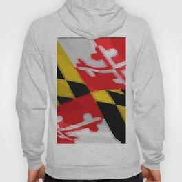 Maryland Fancy Flag Hoody