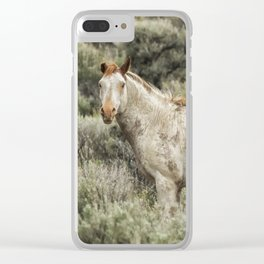 South Steens Stallion Alone on the Range Clear iPhone Case