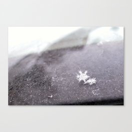 perfect snowflakes Canvas Print
