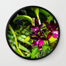 dark purple orchids Wall Clock