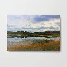 Weed Orchard Lake  Metal Print