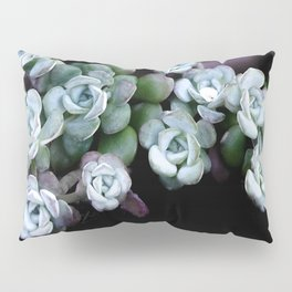 Sedum Clavatum Pillow Sham