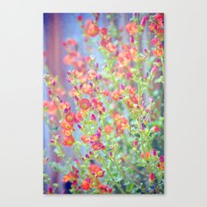 Garden Song Canvas Print