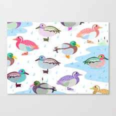 Nice Weather For Ducks Canvas Print
