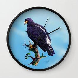 Verreaux's Eagle  Wall Clock