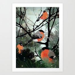 Bullfinches Art Print