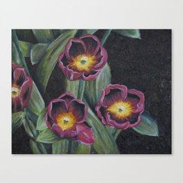 Buchenhoff Tulips Canvas Print